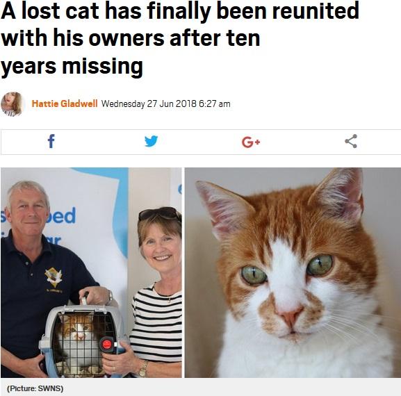 10年間行方不明になっていた猫、無事に飼い主のもとへ(画像は『Metro 2018年6月27日付「A lost cat has finally been reunited with his owners after ten years missing」(Picture: SWNS)』のスクリーンショット)