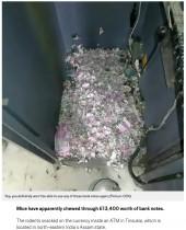 【海外発!Breaking News】ネズミがATM内の札200万円相当をビリビリにして巣作り(印)