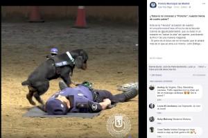 【海外発!Breaking News】警察犬が倒れた警察官に心臓マッサージを施す(スペイン)<動画あり>