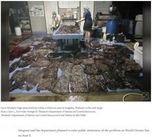 【海外発!Breaking News】死んだゴンドウクジラの胃から80枚以上のゴミ袋 深刻な海洋汚染(タイ)