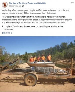 【海外発!Breaking News】全長4.7メートルの巨大イリエワニ、8年越しで捕獲成功(豪)