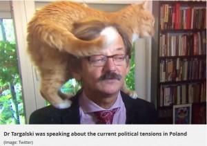 【海外発!Breaking News】深刻な政治問題のTVインタビュー中、飼い猫まさかの乱入(ポーランド)