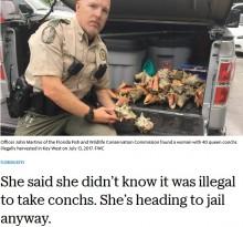 【海外発!Breaking News】ビーチで拾った貝を持ち帰ろうとした観光客が懲役刑に(米)