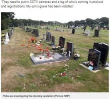 【海外発!Breaking News】心無い墓荒らし、子供や赤ちゃんの墓をめちゃくちゃに(英)