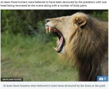 サイを狙った密猟者ら、飢えたライオンの餌食に(南ア)