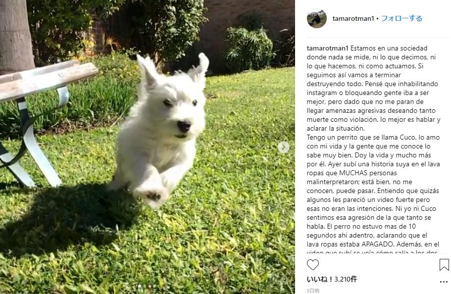 「この子を本当に愛している」という飼い主だが…(画像は『tamarotman1 2018年8月12日付Instagram「Estamos en una sociedad donde nada se mide, ni lo que decimos, ni lo que hacemos, ni como actuamos.」』のスクリーンショット)