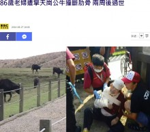 【海外発!Breaking News】発情期の水牛が突進 女性が死亡(台湾)