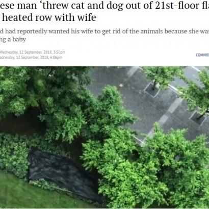 【海外発!Breaking News】妊娠中の妻と口論になった夫、21階窓からペットの犬猫を投げ捨てる(中国)