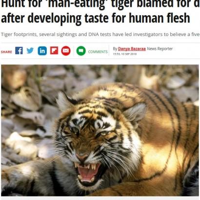 【海外発!Breaking News】人間の血の味を覚えたベンガルトラ 13人を襲い、地元住民は怯える日々(印)