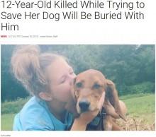 【海外発!Breaking News】道路に飛び出した愛犬を救おうと 少女(12)が犬とともに撥ねられ死亡(米)