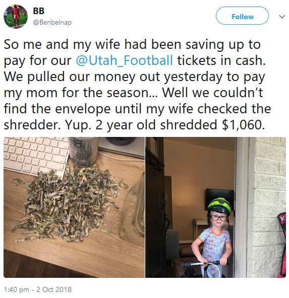 パパとママの貯金をシュレッダーにかけ粉々にした2歳児(画像は『BB(Benbelnap) 2018年10月2日付Twitter「So me and my wife had been saving up to pay for our @Utah_Football tickets in cash.」』のスクリーンショット)