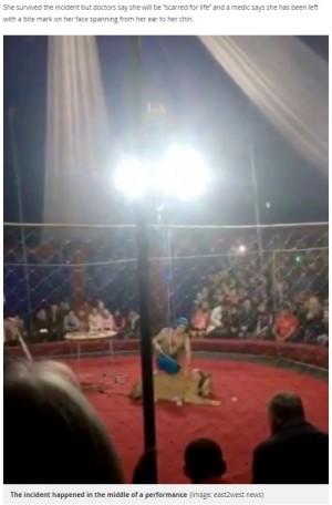【海外発!Breaking News】サーカス出演中の雌ライオン、観客の4歳児に襲いかかる(露)