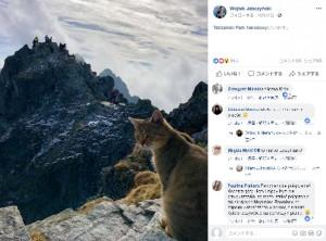【海外発!Breaking News】標高2,500メートルの山頂で猫と遭遇 登山者仰天(ポーランド)