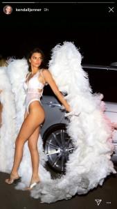 四女ケンダルはモデルが本業(画像は『Kendall 2018年10月31日付Instagram』のスクリーンショット)