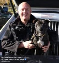 【海外発!Breaking News】捨て犬だったスタッフォードシャー・ブル・テリアが優秀な警察犬に SNSフォロワーは8000人(英)