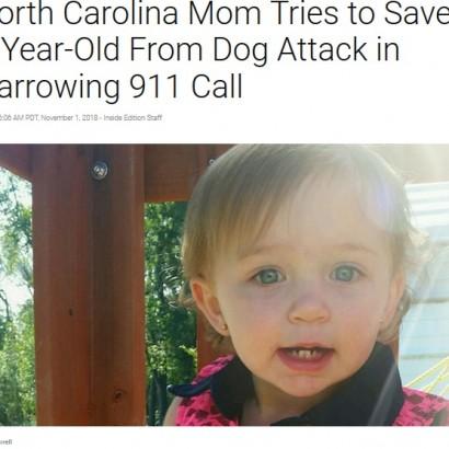 【海外発!Breaking News】1歳女児、家族が飼っていたピットブルに襲われ死亡(米)