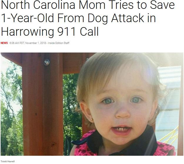 飼い犬に噛まれ死亡した1歳女児(画像は『Inside Edition 2018年11月1日付「North Carolina Mom Tries to Save 1-Year-Old From Dog Attack in Harrowing 911 Call」』のスクリーンショット)