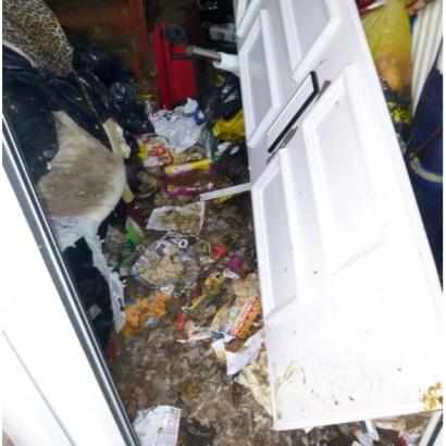 【海外発!Breaking News】ノミが撥ね大量の糞がドアをブロック 劣悪な環境で猫を飼っていた女に生涯ペット飼育禁止令(英)