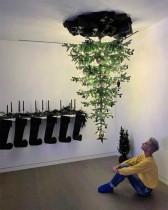 【イタすぎるセレブ達】アリアナ・グランデ、クリスマスツリーを逆さまに吊るす
