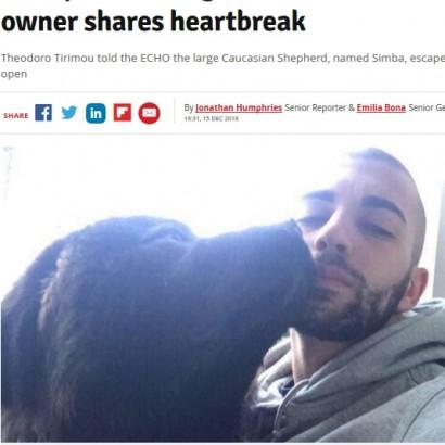 【海外発!Breaking News】通行人5人を負傷させ安楽死となった大型犬の飼い主 「ただ家族を守ってただけ」(英)