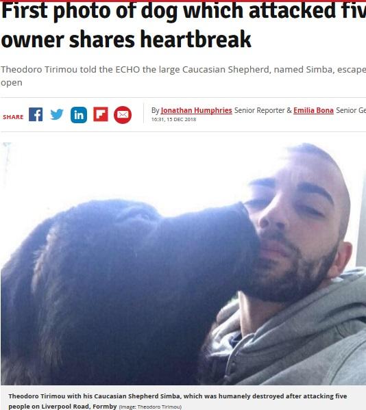 通行人5人を襲った大型犬の飼い主、犬を擁護(画像は『Liverpool Echo 2018年12月15日付「First photo of dog which attacked five people as owner shares heartbreak」(Image: Theodoro Tirimou)』のスクリーンショット)