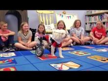 【海外発!Breaking News】「他人と異なる理由でいじめをしないで」 障害を抱える犬から大切なことを学ぶ児童たち(米)<動画あり>