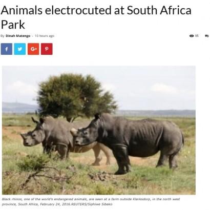 【海外発!Breaking News】国立公園で送電鉄塔が倒れ、野生動物6頭が感電死(南ア)