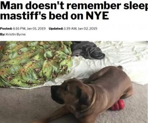 【海外発!Breaking News】泥酔し自宅と勘違いした男性、他人の家で番犬と添い寝(米)<動画あり>