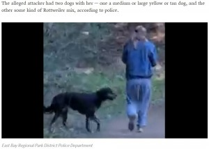 【海外発!Breaking News】襲ってきた犬にペッパースプレーを噴射したジョギング中の女性に逆上 飼い主が噛みつく(米)