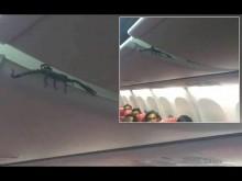 【海外発!Breaking News】ライオン・エア機内の荷物棚からサソリ 乗客ら恐怖に慄く(インドネシア)<動画あり>