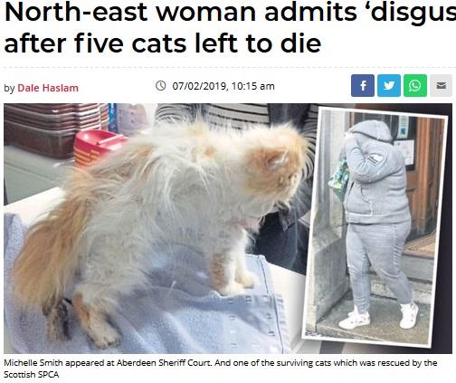 栄養失調状態だった猫と飼育放棄していた女(画像は『Evening Express 2019年2月7日付「North-east woman admits 'disgusting' neglect after five cats left to die」(Scottish SPCA)』のスクリーンショット)