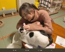 """【エンタがビタミン♪】HKT48森保まどか""""保護猫カフェ""""で癒される姿に、ファン「猫になりたい」"""