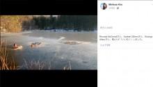 【海外発!Breaking News】2頭の犬を救う為、男性とその飼い犬が凍った池に飛び込む(米)<動画あり>