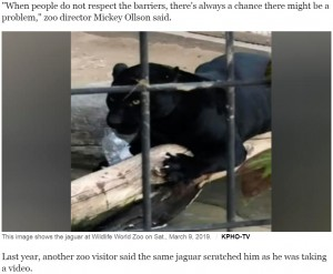 """女性を襲った黒のジャガー(画像は『CBS News 2019年3月11日付「Woman clawed by jaguar at zoo says it was a """"crazy accident""""」(KPHO-TV)』のスクリーンショット)"""