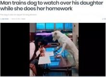 【海外発!Breaking News】スマホに夢中の少女を宿題に集中するように監視し続ける犬(中国)<動画あり>