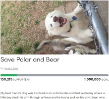 【海外発!Breaking News】4歳児の腕を噛みちぎったハスキー犬 飼い主らが署名活動「犬を処分しないで」(米)