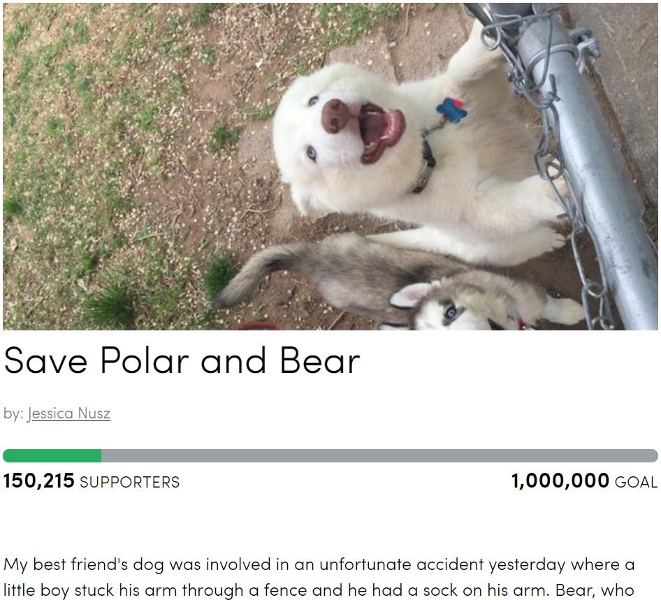 ハスキー犬の処分が検討される中、飼い主が署名活動で反対の声をあげる(画像は『Petition Site 「Save Polar and Bear」(Jessica Nusz)』のスクリーンショット)