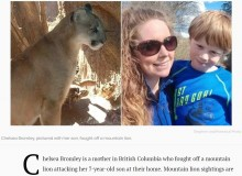 【海外発!Breaking News】ピューマに噛みつかれた7歳息子、母親が決死の救出(カナダ)