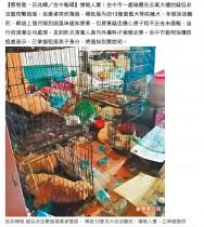【海外発!Breaking News】住人行方不明のアパートで犬13匹が餓死(台湾)