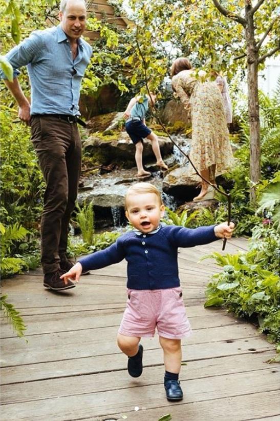 もうすぐ1歳1か月になるルイ王子、足取りもしっかり(画像は『Kensington Palace 2019年5月19日付Instagram「The Duke and Duchess of Cambridge are very pleased to share some new photographs of their family as they visited the RHS Back to Nature Garden at the #ChelseaFlowerShow on Sunday afternoon.」』のスクリーンショット)