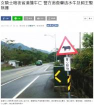 【海外発!Breaking News】道路を歩いていた水牛に衝突 原付ドライバー死亡(台湾)