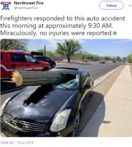 【海外発!Breaking News】巨大サボテンがフロントガラスを突き破る ドライバーは軽傷(米)