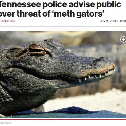 【海外発!Breaking News】アリゲーターが凶暴化? 「トイレにドラッグを流さないで」警察署が注意喚起(米)