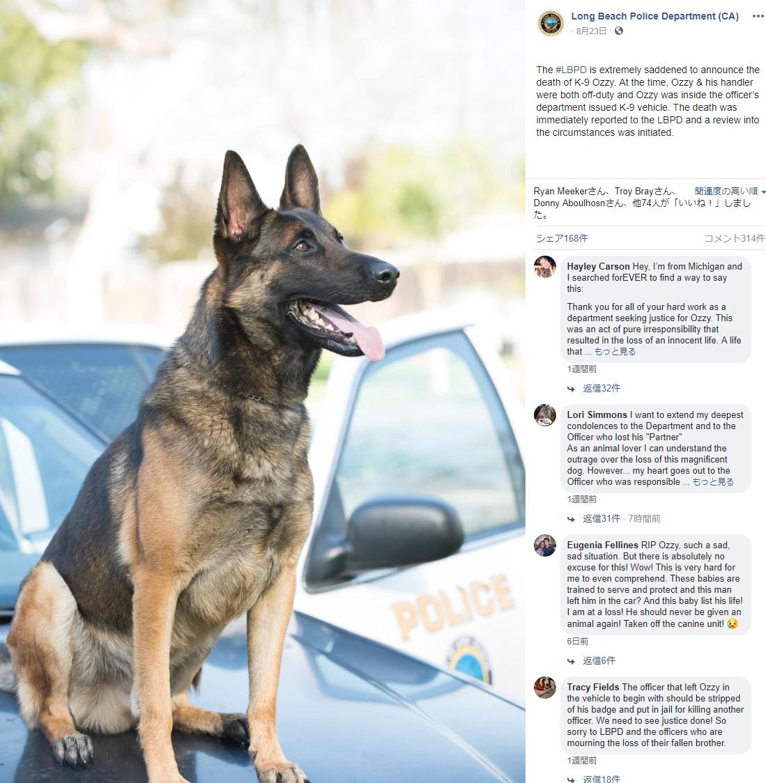 パトカー車内で命を落とした警察犬(画像は『Long Beach Police Department(CA) 2019年8月23日付Facebook「The #LBPD is extremely saddened to announce the death of K-9 Ozzy.」』のスクリーンショット)