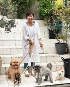 浅田美代子と愛犬(左後方:COO、左手前:カル、中央:与作、右:アヴィ)