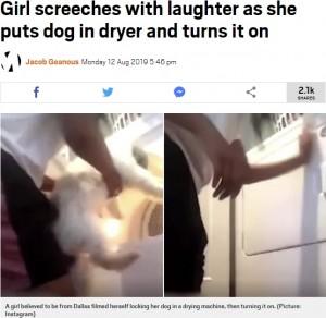 【海外発!Breaking News】洗濯乾燥機に犬を入れて回した少女に非難殺到(米)<動画あり>