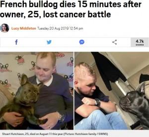 【海外発!Breaking News】飼い主の死から15分後に息を引き取った犬(スコットランド)