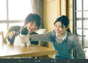 猫(ナナ)と福士蒼汰と竹内結子(画像は『アンク@金曜ロードSHOW!公式 2019年8月7日付Twitter「ネコのカット増量 #旅猫リポート TV特別版」』のスクリーンショット)
