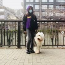 【エンタがビタミン♪】工藤静香、真夏の犬の散歩に注意喚起 「この季節は必ず道路を手で触って」