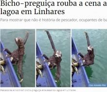 【海外発!Breaking News】泳ぎが得意なナマケモノ、ボートに乗ってタイタニックのポーズ(ブラジル)<動画あり>